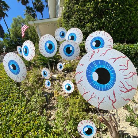 Gallery-Pic-eyeballs